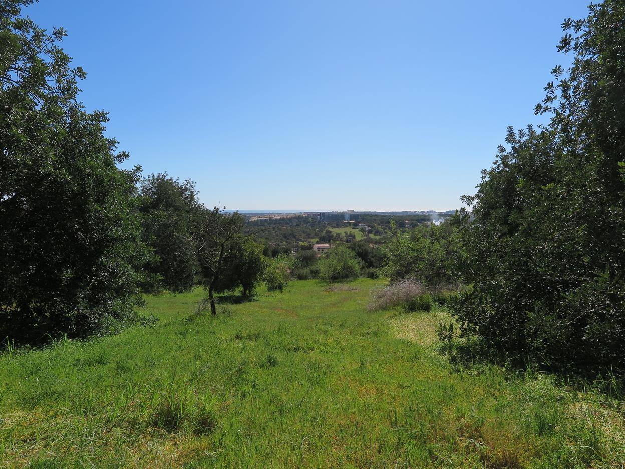 Sweeping Sea Views from Expansive Plot in Benfarras, Boliqueime